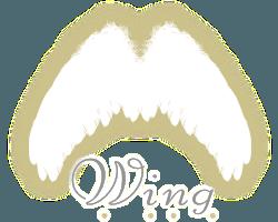 沖縄県備瀬のジュエリーショップ Wing